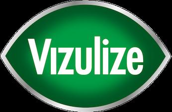 Vizulize Logo.